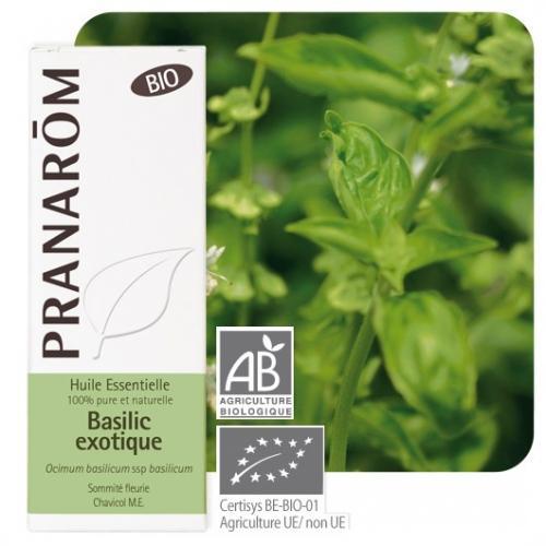 Olejek eteryczny bazyliowy **Bazylia / Ocimum basilicum ssp basilicum** 10ml*PRANARÔM*BIO TERMIN: 30.04.2020