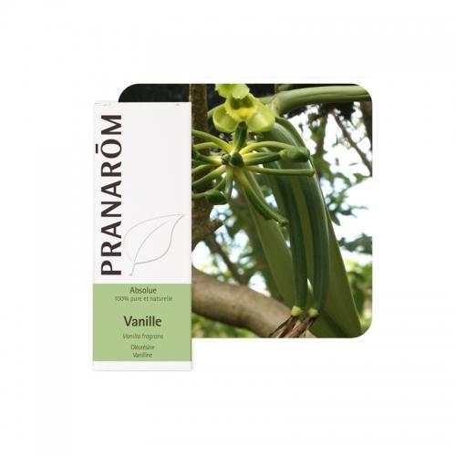 Olejek eteryczny waniliowy **Wanilia / Vanilla planifolia** 5ml*PRANARÔM*BIO